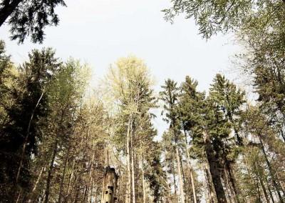Elbsandsteingebirge-1029